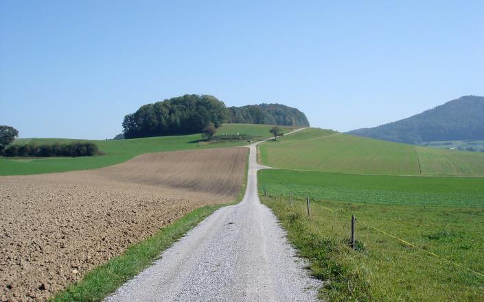 Landschaft bei Schlatt