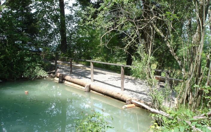 Teich mit Steg in Schlatt