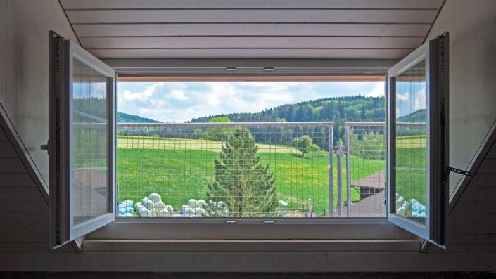 Fenster Wohnung A202